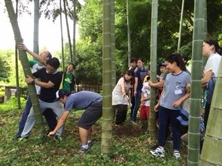 竹の切り倒し.JPG