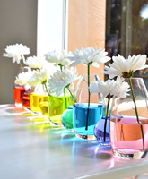 Rainbow-Water-Centerpiece.jpg